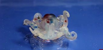 designed-by-harvard-researchers-the-octobot-is-the-first-fully-soft-autonomous-robot.png